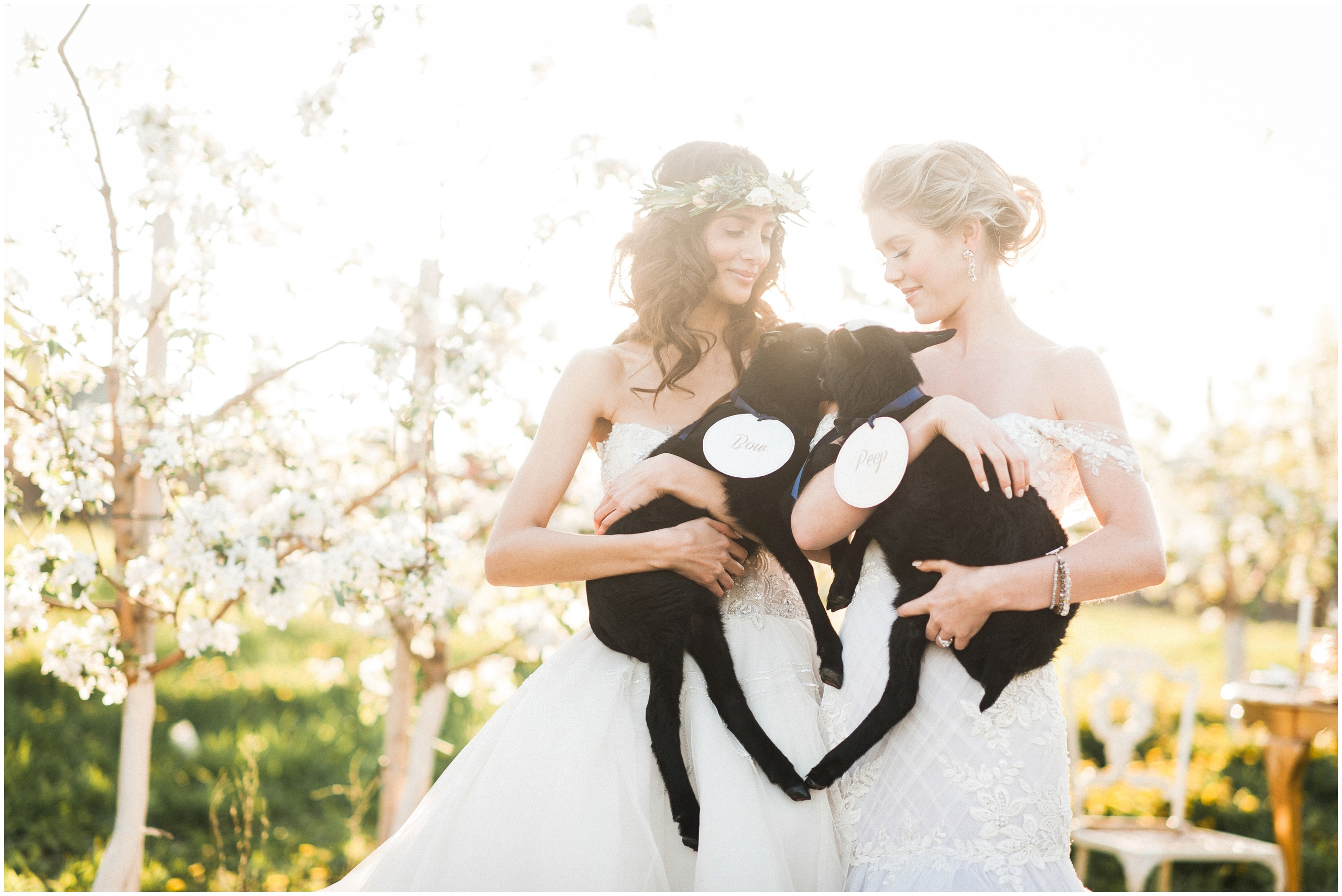 Wedding Inspiration: Brides wearing flower crowns and Ines Di Santo gowns holding baby lambs.
