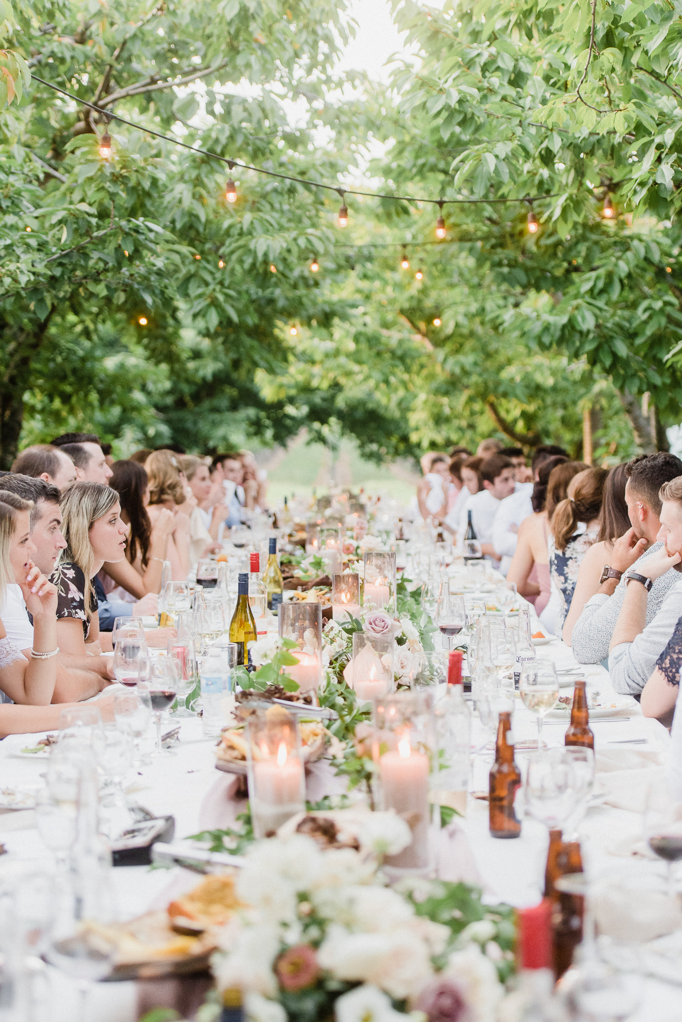 Harvest table wedding setup at Kurtz Orchards by Jenn Kavanagh Photography